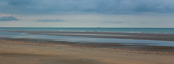 Camber sands, camber, sand, sussex, east sussex, sea, seaside, beach, dune, shell, wave, tide, kite
