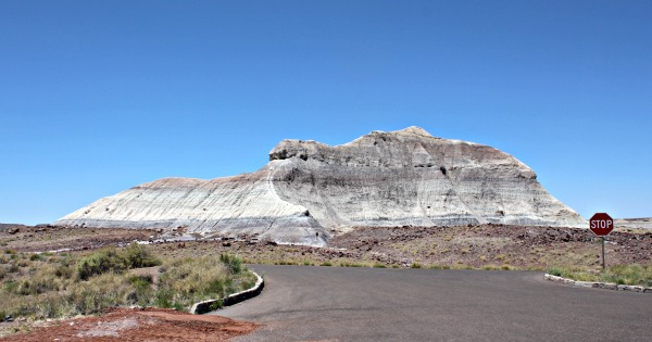 USA Roadtrip -  Petrified Forest