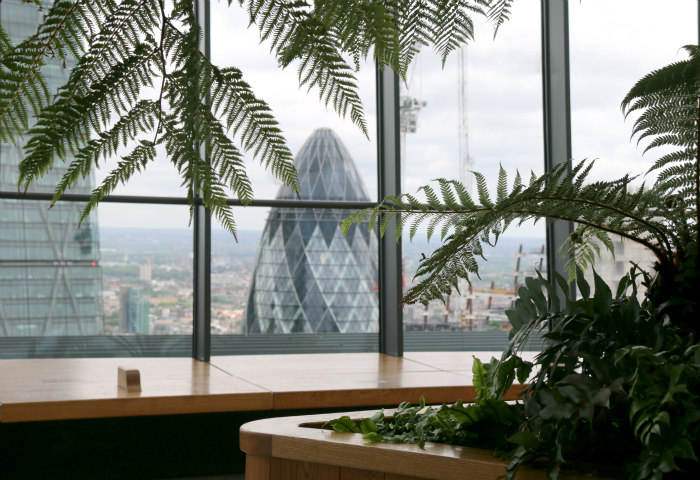 London sky garden view gherkin 2