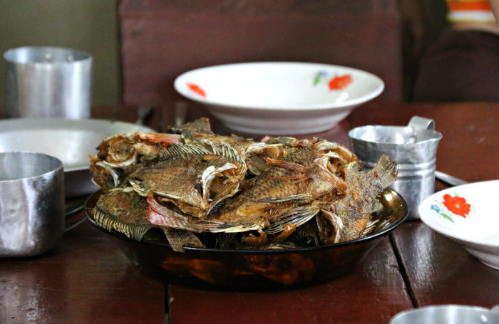 Cuba Vinales grilled fish airbnb experience