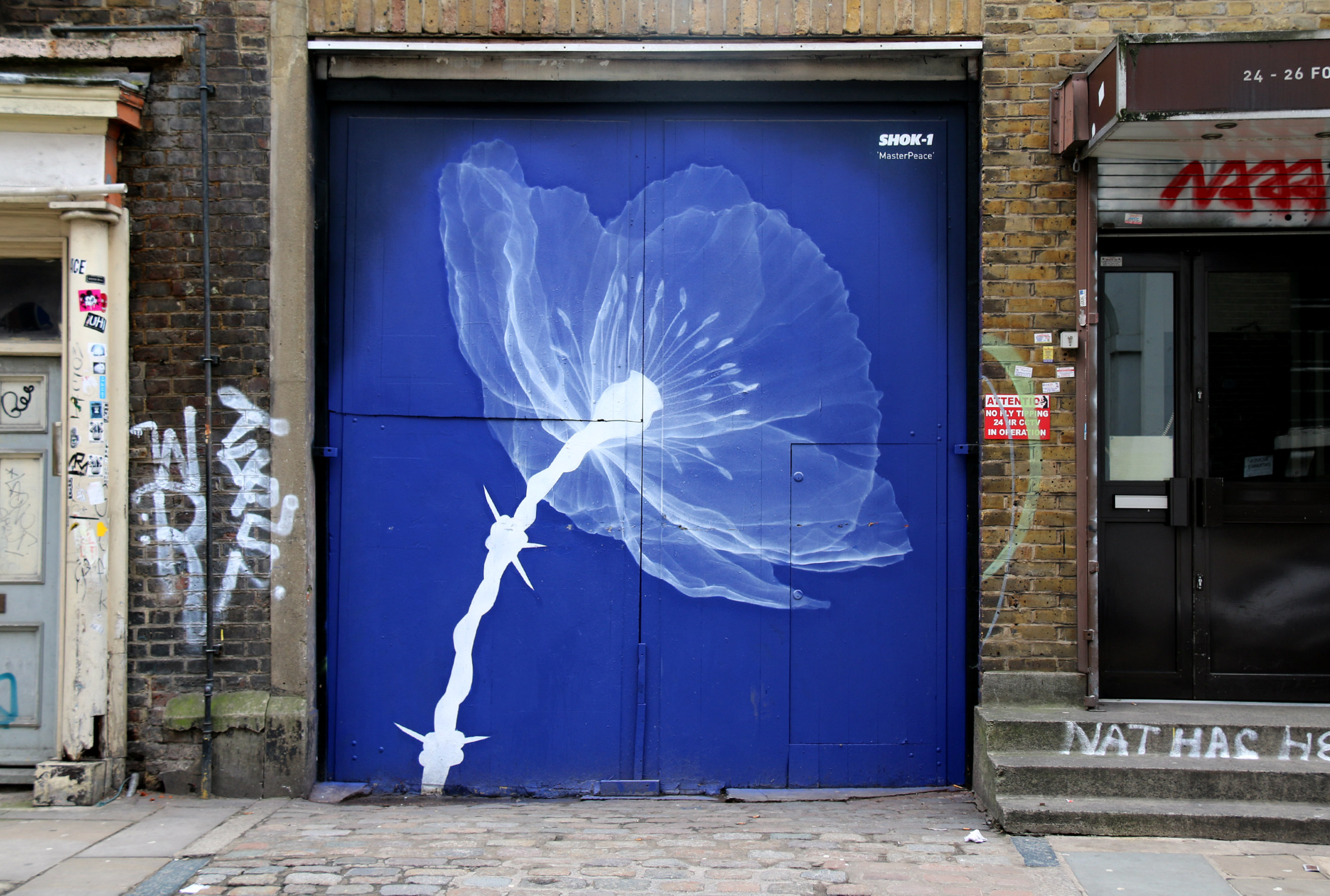 Fournier street 24-26 Shoreditch street art mural X ray flower by Shok-1